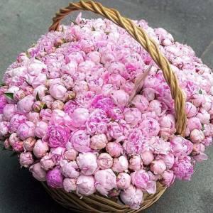 Корзина 501 розовый пион R955