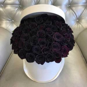 Коробка 51 черная роза с оформлением R840